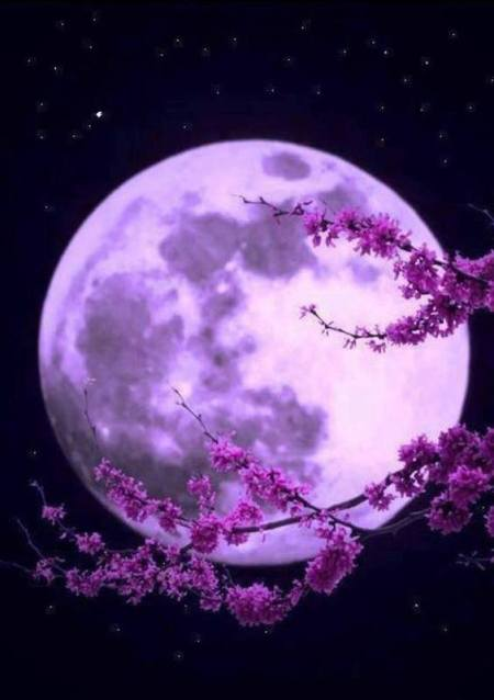 Full Moon with purple tint